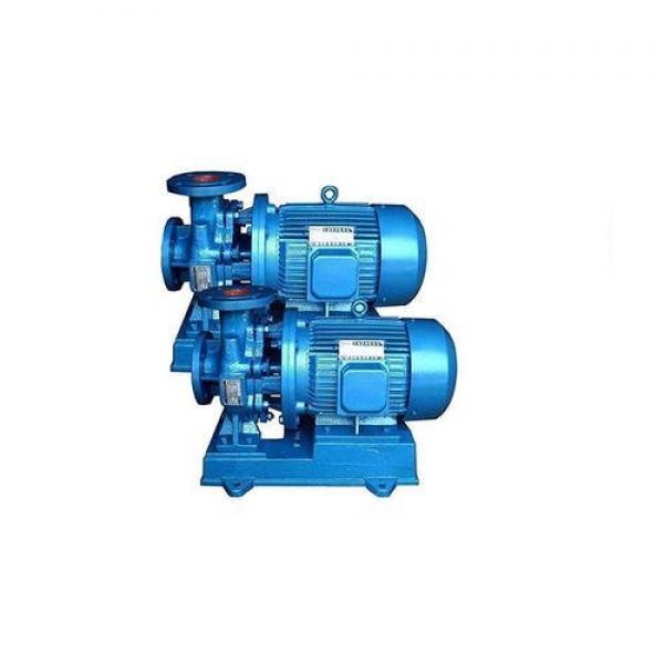 Vickers PV046R1K1T1NGLZ+PVAC1ECMNSJW35 Piston Pump PV Series #1 image